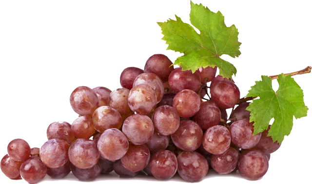 Pics For > Red Grapes Png